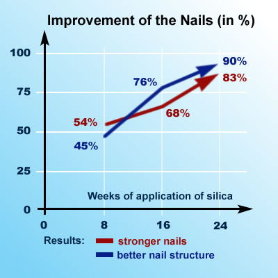 Silica Research: Improvement of the Nails