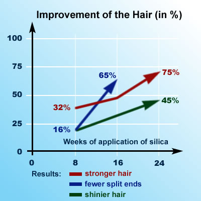 Silica Research: Improvement of the Hair